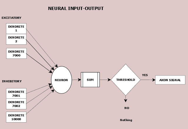 Figure 8.1 Neuron accepts inputs and, if its threshold is exceeded, sends an output.
