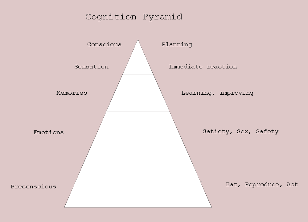 Figure 15.1 Cognition pyramid. Left side words awareness level; right side motivation