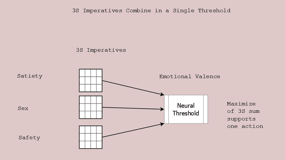 Figure 11.2 3S Imperatives combine to support a single action
