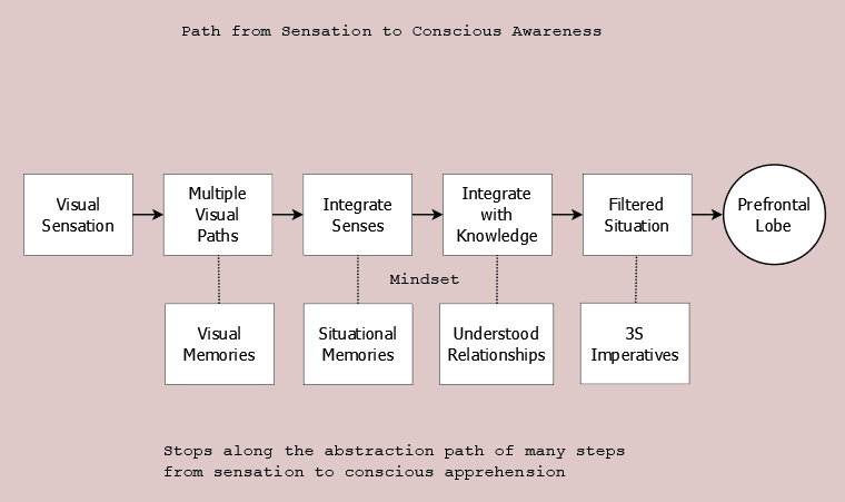 Path of Visual Sights to Consciousness