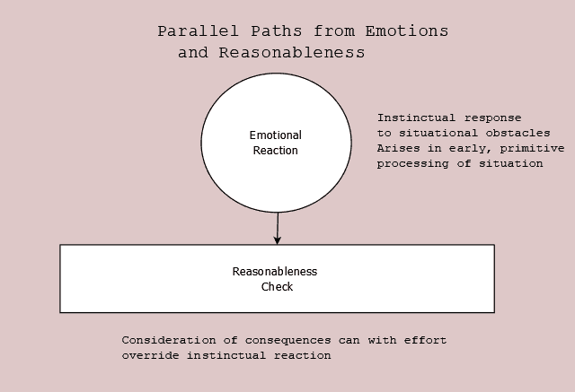 Figure 1. Parallel paths from emotions and reasonableness