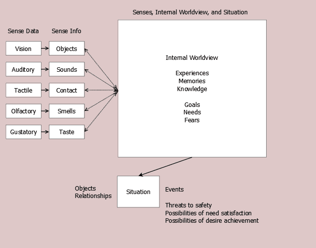 Figure 11.1 Senses, Internal Worldview, and Situation.